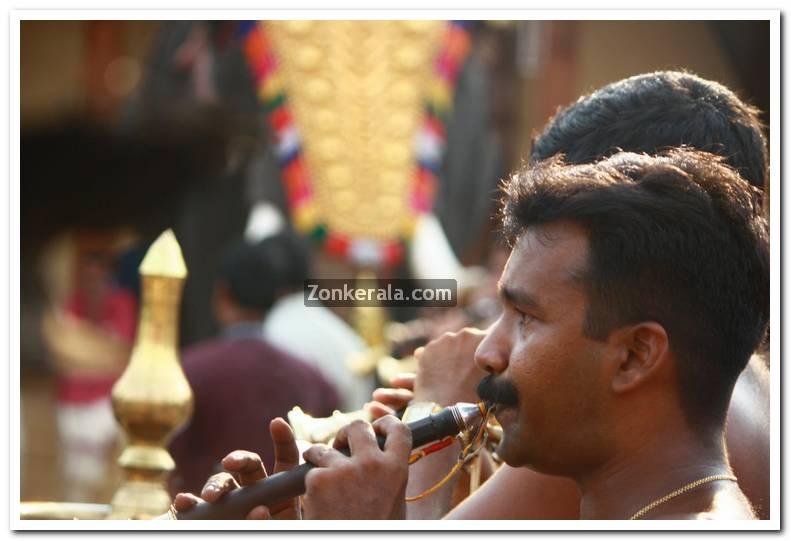 Haripad utsavam pakalpooram photos 12