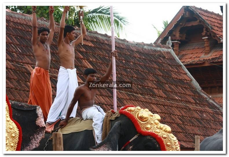 Haripad utsavam pakalpooram photos 4