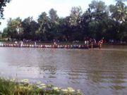Onam boat race 4