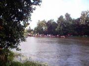 Onam boat race 7