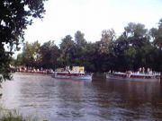 Onam boat race 8