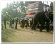 Paravoor meena bharani photo 2