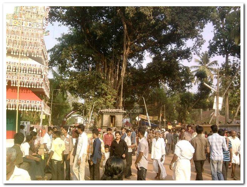 Puttingal temple meena bharani 1