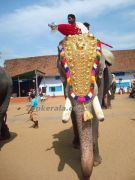 Tripunithura elephant