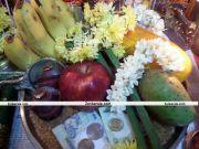 Vishu 2011 photos 2