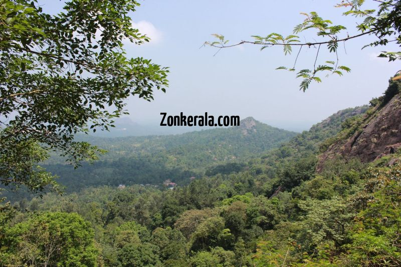 Greenery down edakkal caves wayanad 279