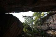 Trees from inside edakkal caves 268