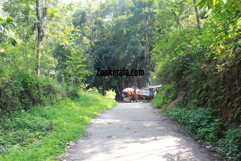 Walk to the caves at edakkal 18