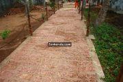 Padmanabhapuram palace backyard 2