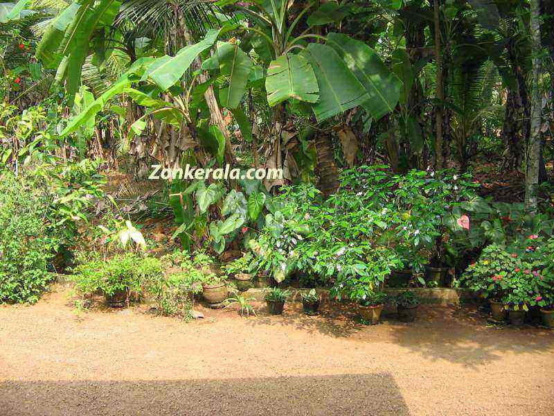 Roland beginner landscaping designs in kerala for Kerala style garden designs
