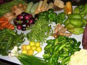 Vegetables 2972