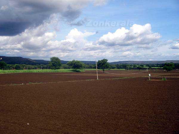Farm fields 6670