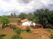 Farmer house 6646