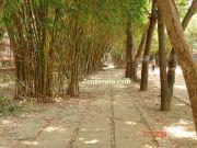 A park at malad