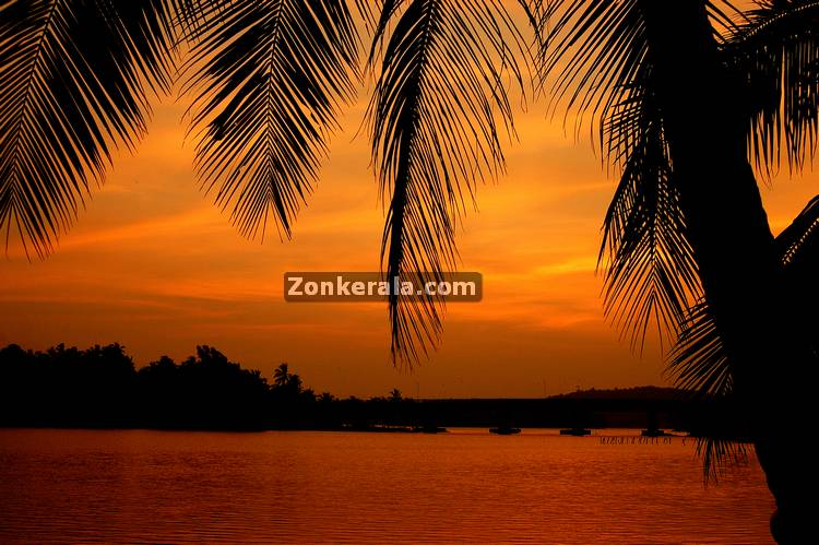 An evening landscape in kerala