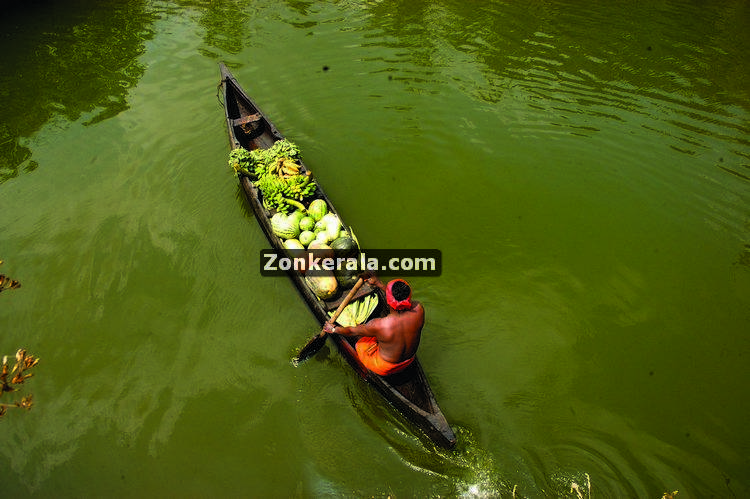 Boat with vegetables