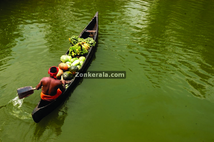 Bota taking vegetables to islands