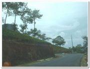 Elappara view 1