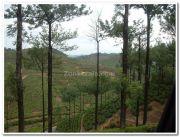 Elappara view 2