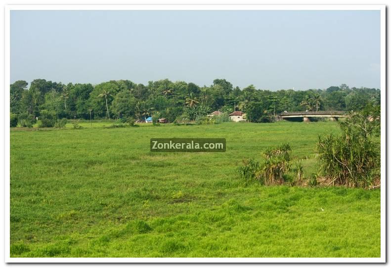 Kerala nature picture 1
