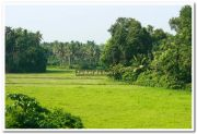 Kerala nature picture 4