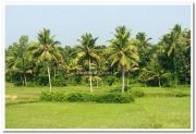 Kerala nature picture 5