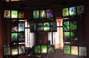 Konni elephant museum bird animal sound system 908