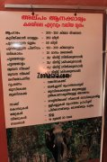 Konni elephant museum elephant brief information 568