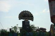 Kottayam land of letters lakes latex 66