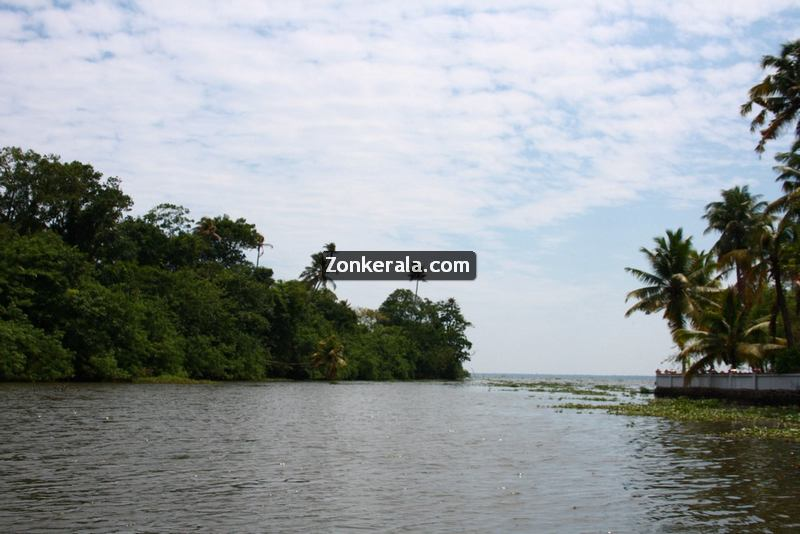 Kumarakom lake photos 10