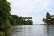 Kumarakom lake photos 9