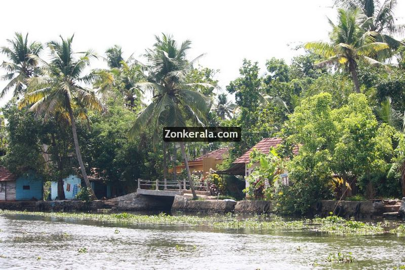 Kumarakom pictures 6