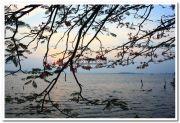 Sunset at marine drive 6