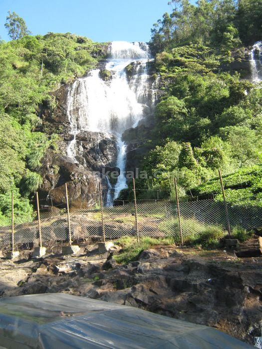 Munnar photo 010