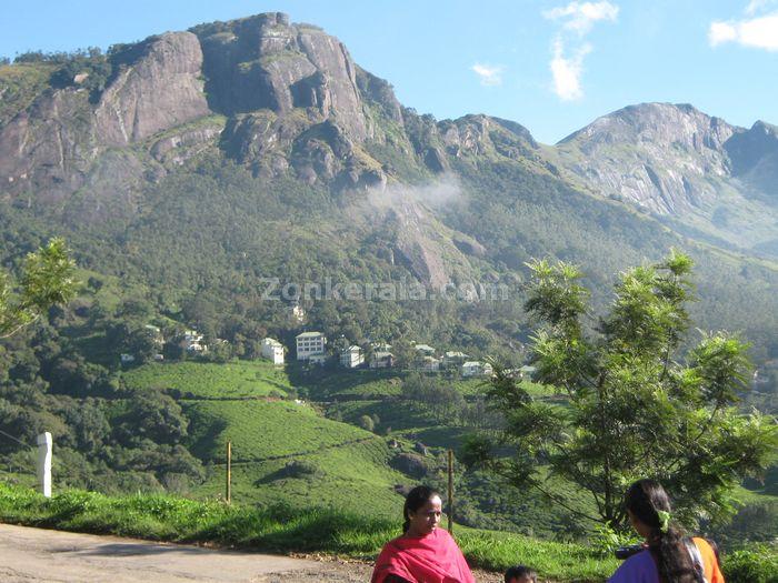 Munnar photo 012