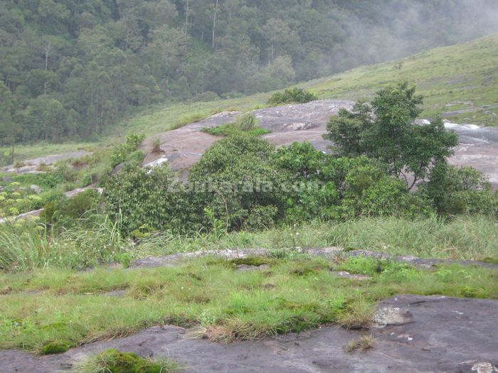 Munnar photo 014
