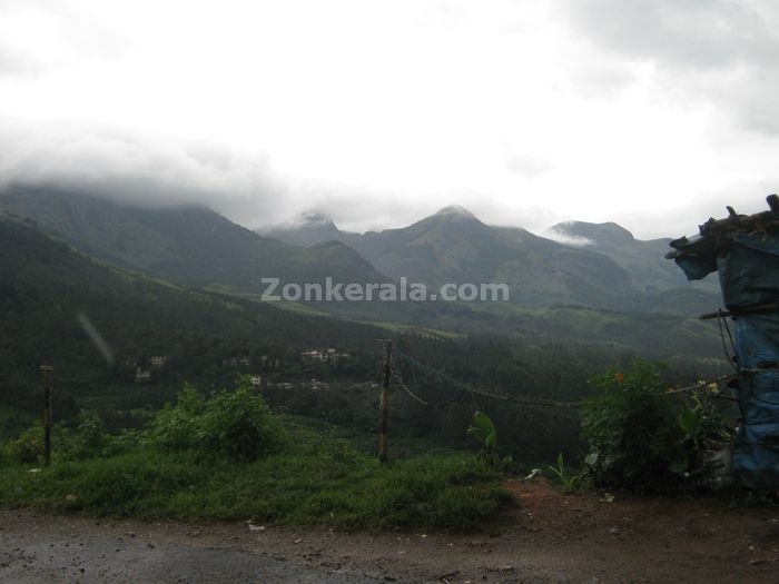 Munnar photo 015