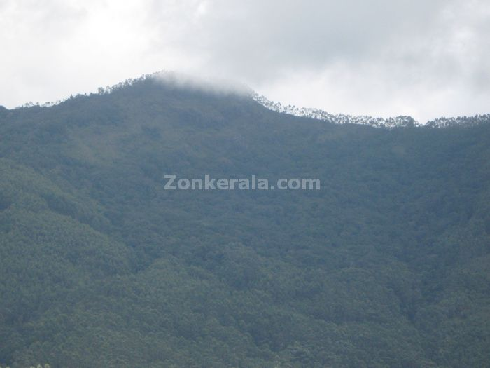Munnar photo 02