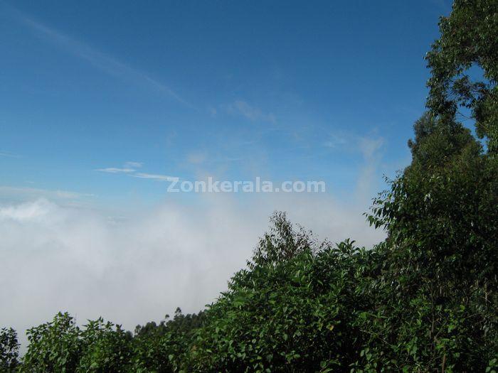 Munnar photo 07