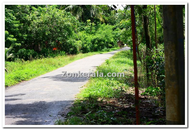 A typical village road in kuttanad