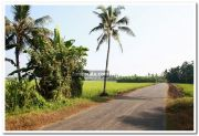 Alappuzha district nature 12