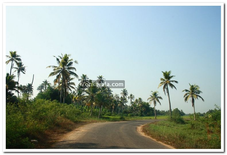 Alappuzha district nature 16