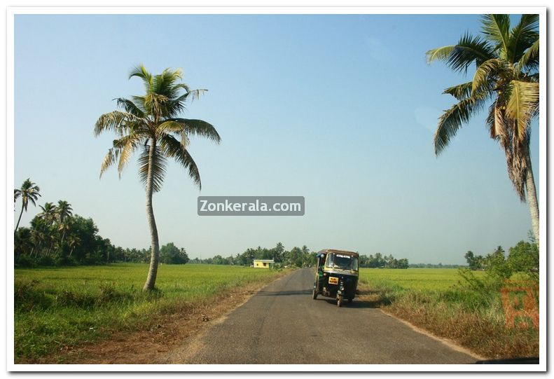 Alappuzha district nature 17