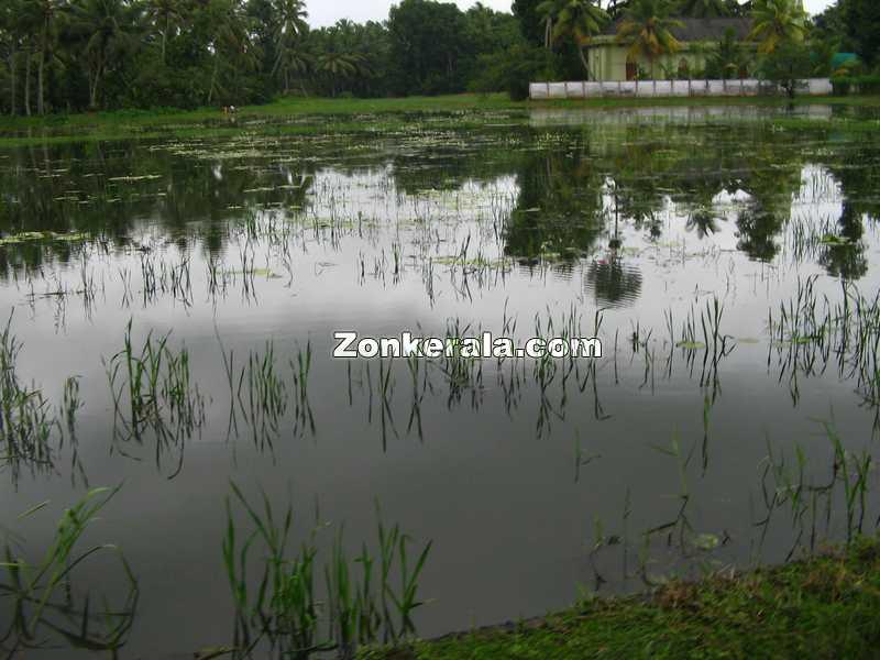 Cheruthana rainy season