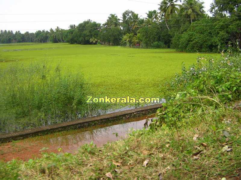 Kerala rainy season. Kerala rainy season