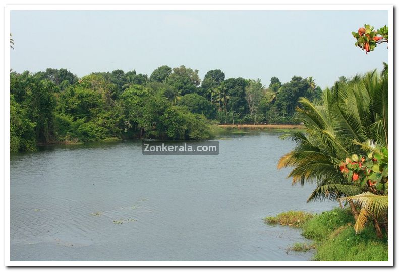 Rivers in kuttanad 4