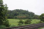 Kerala greenary near tracks