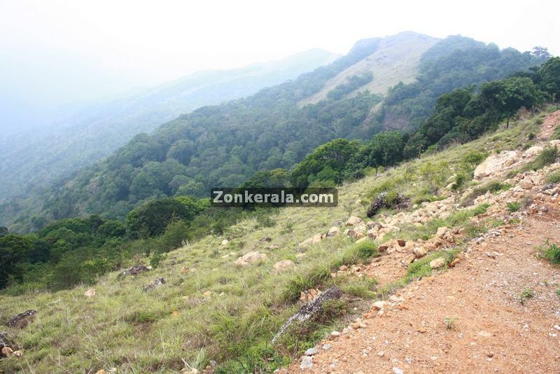 Ponmudi near trivandrum 8