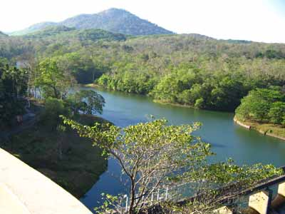 Thenmala dam 2736