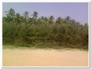 Varkala papanasam beach photo 3